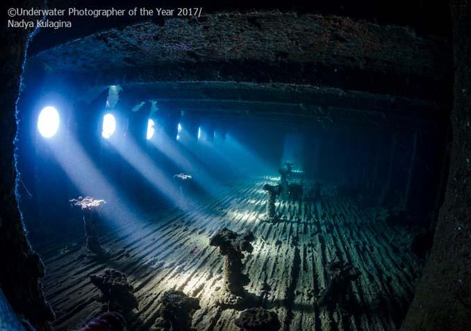 33 από τις κορυφαίες υποβρύχιες φωτογραφίες της χρονιάς (16)