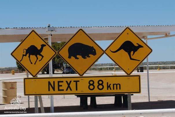 Μόνο στην Αυστραλία #22 (2)