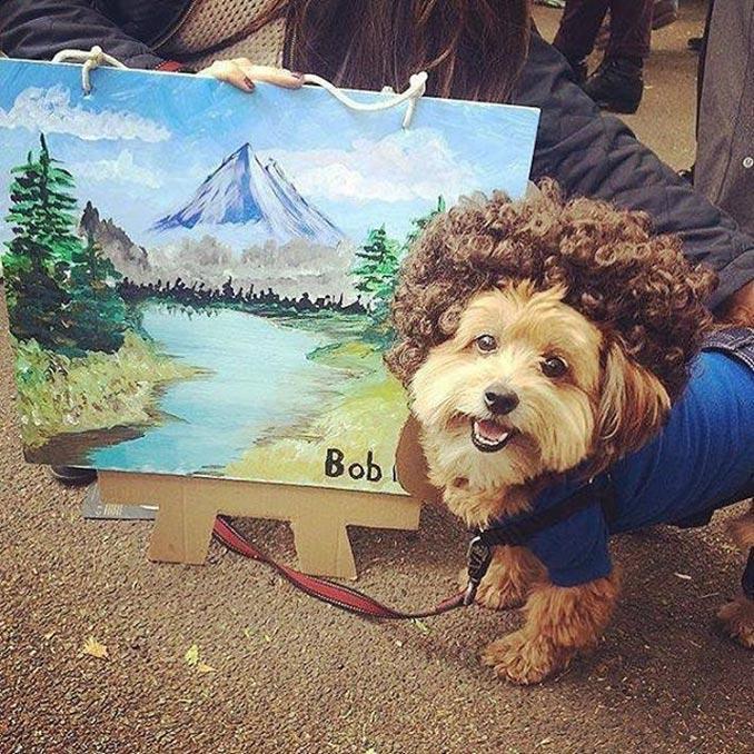 Ο σκύλος που κέρδισε τις φετινές απόκριες! | Φωτογραφία της ημέρας