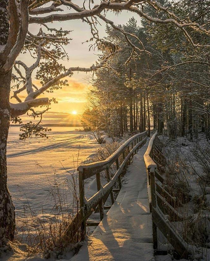 Το πρώτο φως του ήλιου σε ένα μαγικό χιονισμένο τοπίο | Φωτογραφία της ημέρας