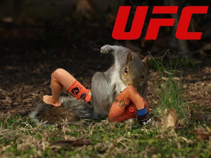 Σκίουρος σε πόζα σούπερ ήρωα έγινε αφορμή για ένα ξεκαρδιστικό Photoshop Battle (2)