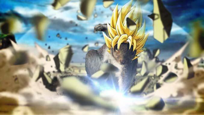 Σκίουρος σε πόζα σούπερ ήρωα έγινε αφορμή για ένα ξεκαρδιστικό Photoshop Battle (7)
