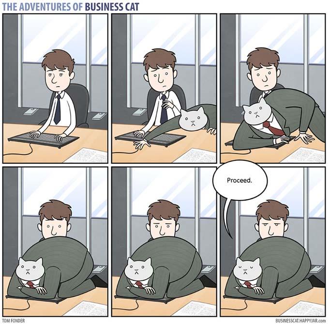 Αν το αφεντικό στο γραφείο ήταν γάτα (10)