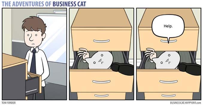 Αν το αφεντικό στο γραφείο ήταν γάτα (13)