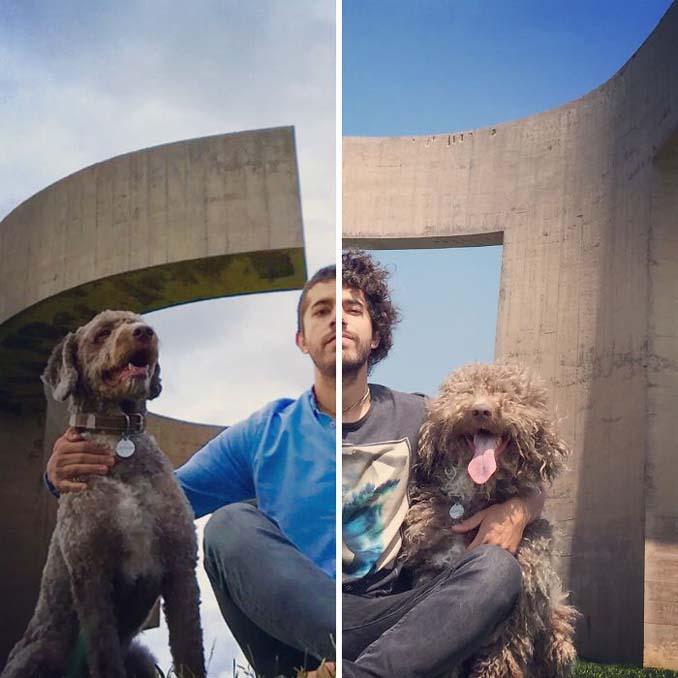 Απίθανες φωτογραφίες σκύλων πριν και μετά το κούρεμα (10)