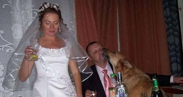 Αστείες φωτογραφίες γάμων #72 (6)