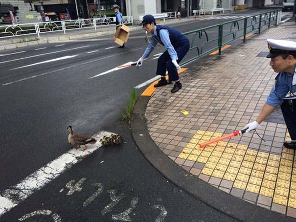 Εν τω μεταξύ, στην Ιαπωνία... #29 (7)