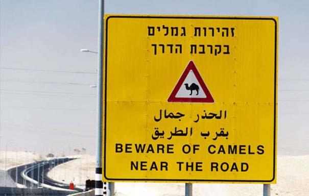 Εν τω μεταξύ, στο Ισραήλ... (23)