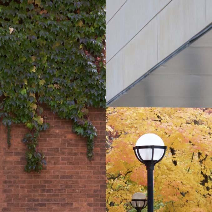 Φωτογραφίες όπου ο φωτισμός και η γωνία λήψης καταργούν κάθε λογική (8)