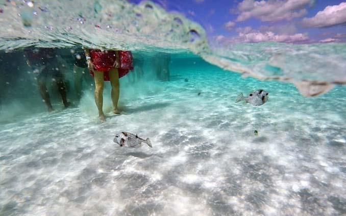 Γάμος στα κρυστάλλινα νερά της Καραϊβικής (18)