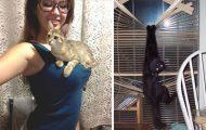 Γάτες που... κάνουν τα δικά τους! #45 (11)