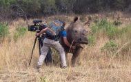 Όταν ένας μεγάλος ρινόκερος ζητάει χάδια