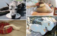 24 ζώα που απλά... έλιωσαν (τις καρδιές μας)