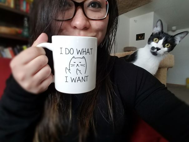 Όταν οι γάτες κάνουν Photobombing (3)
