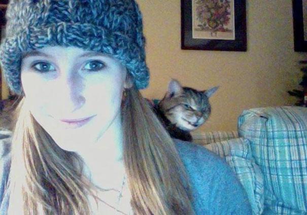 Όταν οι γάτες κάνουν Photobombing (10)