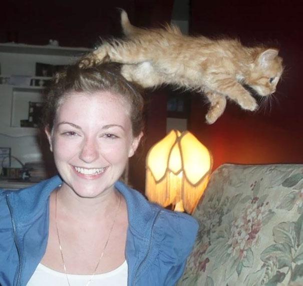 Όταν οι γάτες κάνουν Photobombing (13)