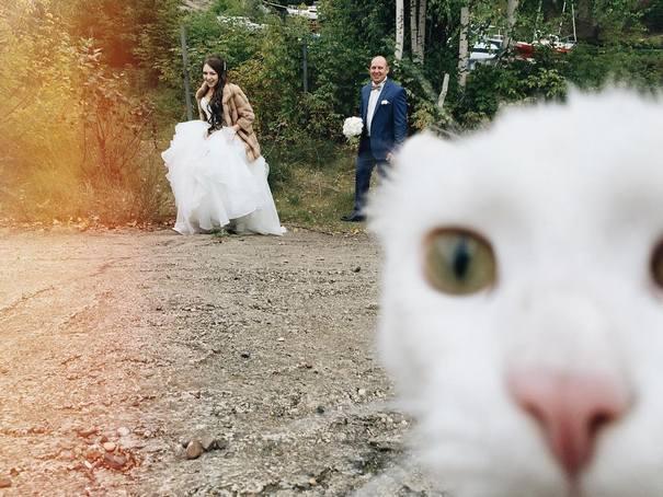 Νεόνυμφοι που αποφάσισαν να πρωτοτυπήσουν με τις γαμήλιες φωτογραφίες τους (1)