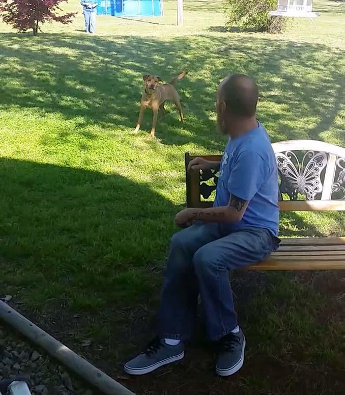 Όταν αυτός ο άνδρας έχασε 22 κιλά, ο σκύλος του δεν τον αναγνώρισε (3)
