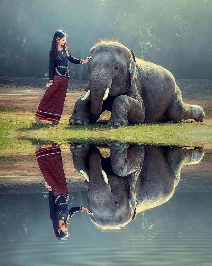 Το κορίτσι και ο ελέφαντας | Φωτογραφία της ημέρας