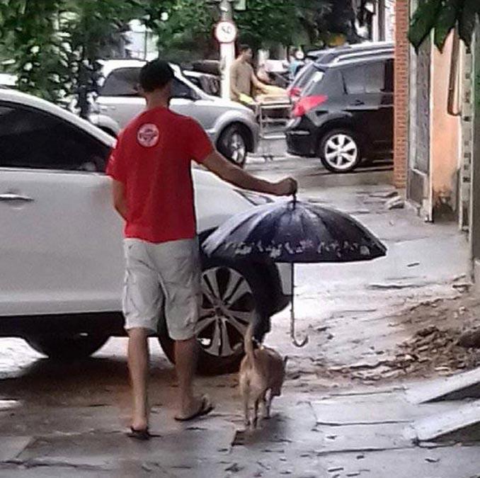 Μια βροχερή βόλτα με τον σκύλο | Φωτογραφία της ημέρας