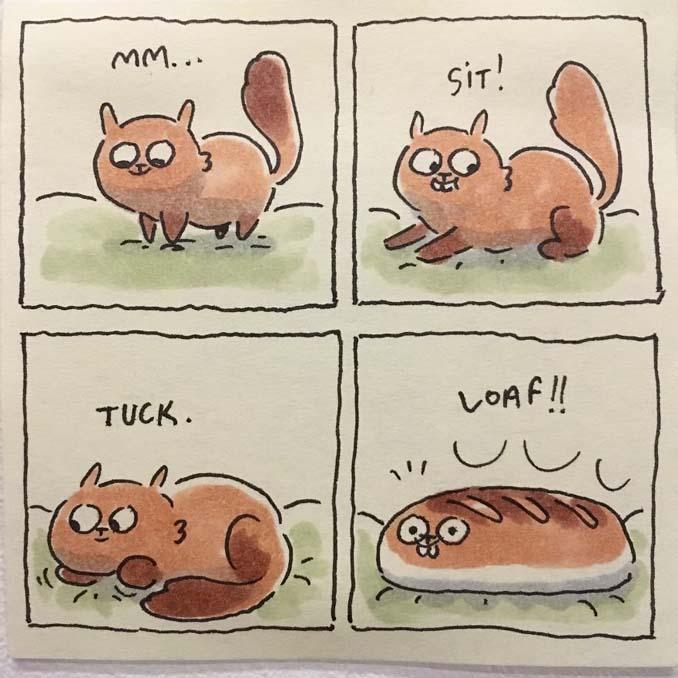 Σκιτσογράφος δείχνει πως είναι η ζωή με τις γάτες της (11)