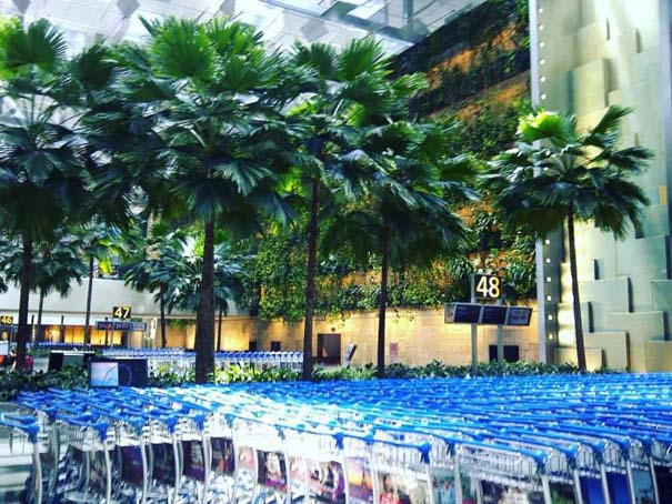 Φωτογραφική περιήγηση στο εντυπωσιακό αεροδρόμιο Changi της Σιγκαπούρης (22)