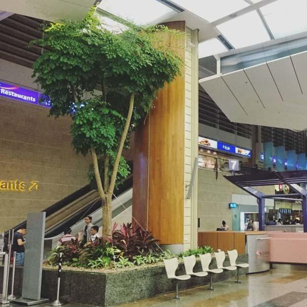 Φωτογραφική περιήγηση στο εντυπωσιακό αεροδρόμιο Changi της Σιγκαπούρης (30)
