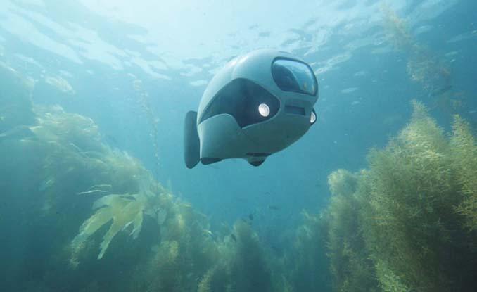 BIKI: Το βιονικό ψάρι που είναι στην πραγματικότητα υποβρύχιο drone (1)