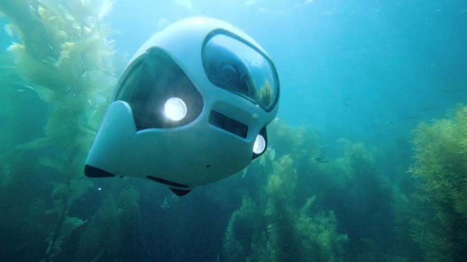 BIKI: Το βιονικό ψάρι που είναι στην πραγματικότητα υποβρύχιο drone (4)