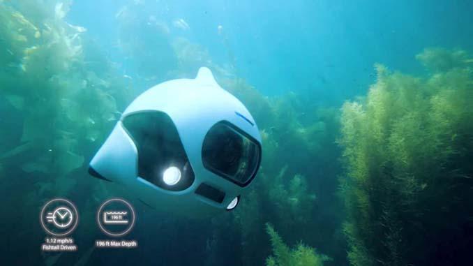 BIKI: Το βιονικό ψάρι που είναι στην πραγματικότητα υποβρύχιο drone (5)