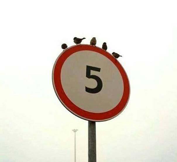 12+1 ακόμη φωτογραφίες που δεν περιγράφονται με λόγια... (7)