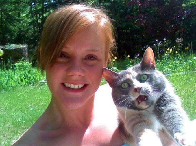 Αυτές οι γάτες σιχαίνονται τις selfies (12)