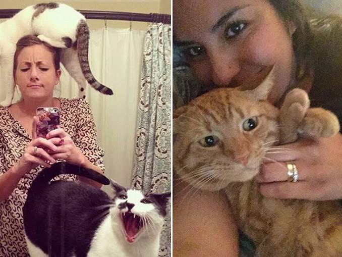 Αυτές οι γάτες σιχαίνονται τις selfies (13)