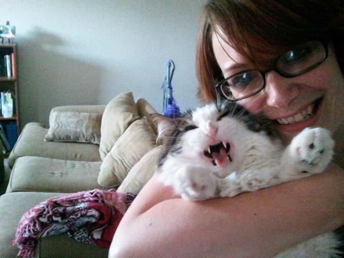 Αυτές οι γάτες σιχαίνονται τις selfies (14)