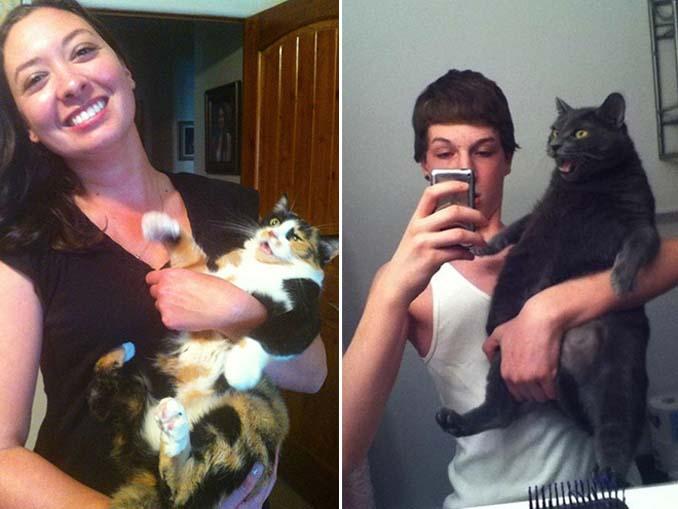 Αυτές οι γάτες σιχαίνονται τις selfies (15)