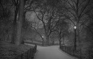 Μόνος στο Σέντραλ Παρκ: Ένας φωτογράφος με αϋπνία απαθανατίζει τη Νέα Υόρκη