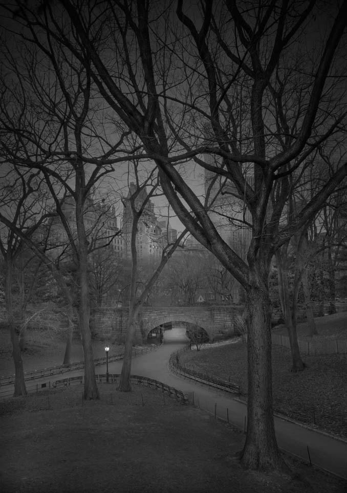 Μόνος στο Σέντραλ Παρκ (3)
