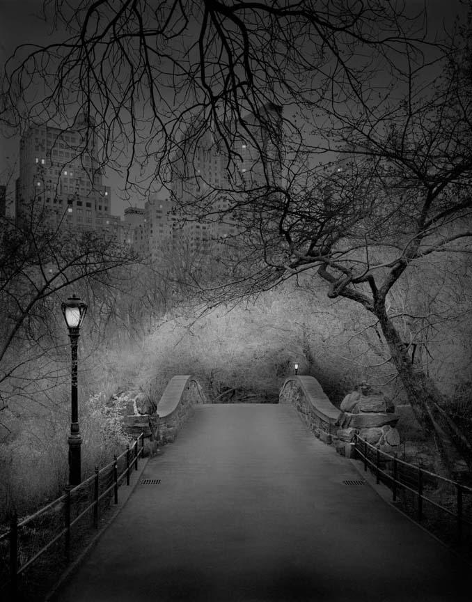 Μόνος στο Σέντραλ Παρκ (5)
