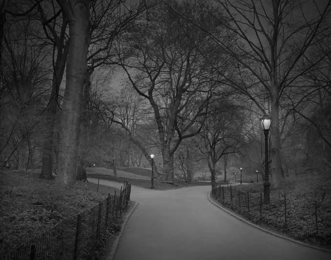 Μόνος στο Σέντραλ Παρκ (8)