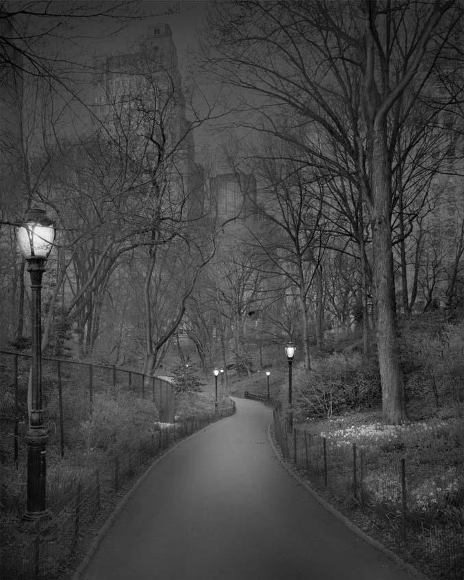 Μόνος στο Σέντραλ Παρκ (9)