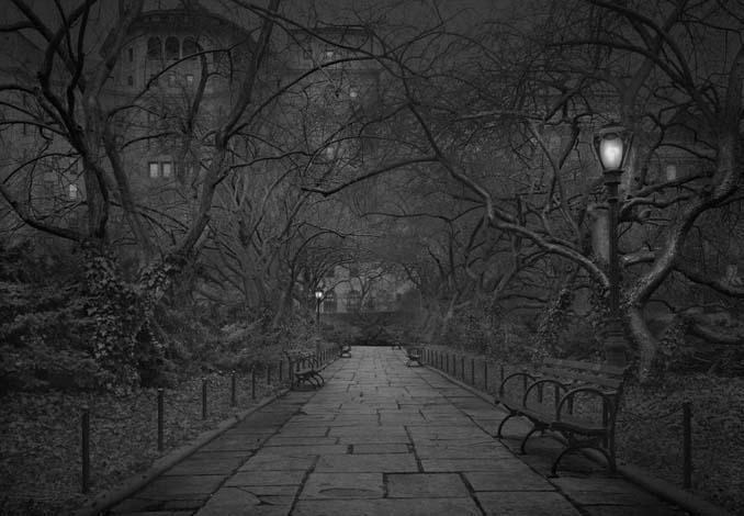 Μόνος στο Σέντραλ Παρκ (16)