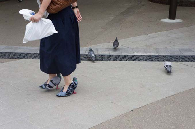 Παπούτσια σε σχήμα περιστεριού (1)