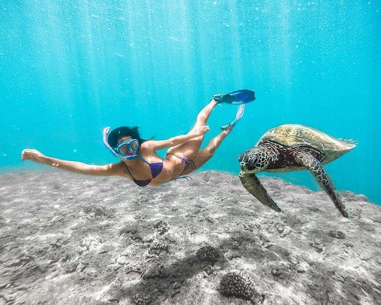Μια νέα φιλία στον βυθό της Χαβάης | Φωτογραφία της ημέρας
