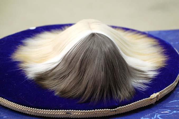Το πλάσμα με το πιο εντυπωσιακό μαλλί στο ζωικό βασίλειο (19)