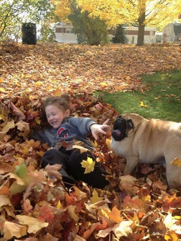 Σκύλοι που φοβούνται τα πιο απίθανα πράγματα (13)