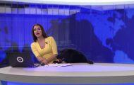 Σκύλος διακόπτει δελτίο ειδήσεων εισβάλλοντας στο studio