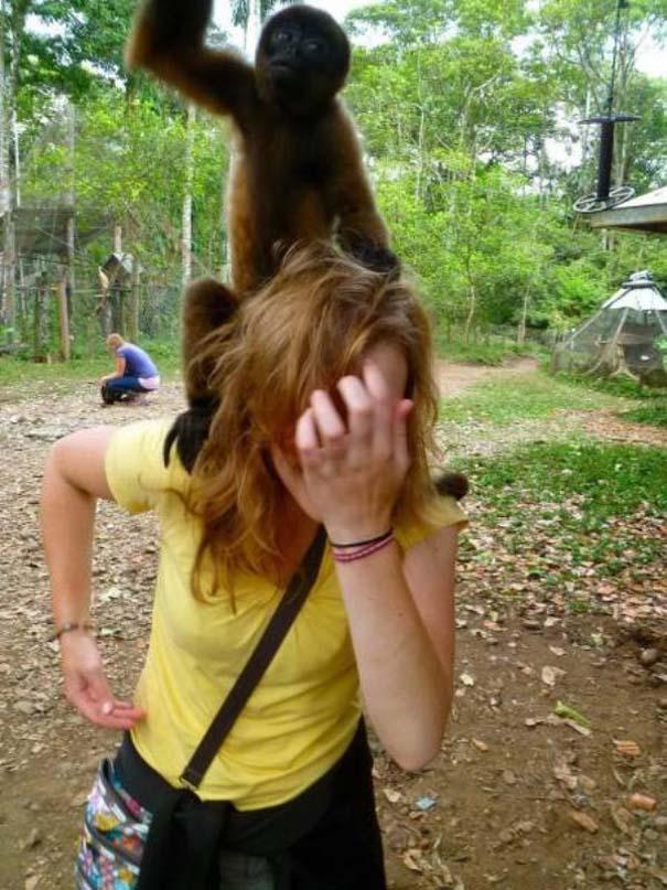 22 ζώα που κάνουν την καθημερινότητα πιο διασκεδαστική (6)