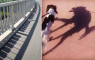 Απίστευτες σκιές που θα σας κάνουν να κοιτάξετε πιο προσεκτικά (1)