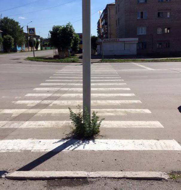 Εν τω μεταξύ, στη Ρωσία... #128 (2)