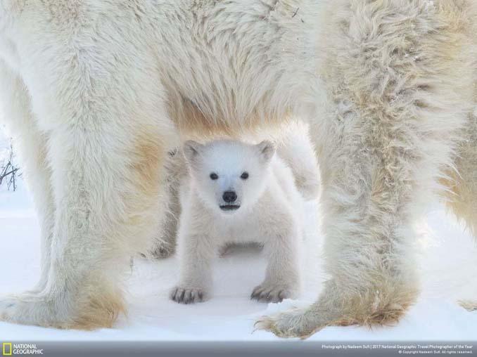 Μερικές ακόμη εντυπωσιακές φωτογραφίες από τον διαγωνισμό National Geographic Traveler 2017 (20)